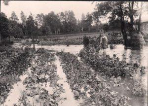 1910: Überschwemmung